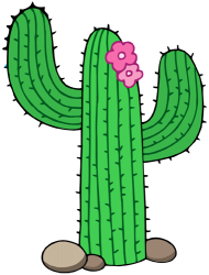 Cactus from the Sonoran Desert, the saguaro Game