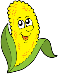 Corn cob, central core of the maize. Ear of corn Game