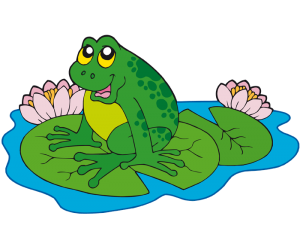 A frog on the leaves of a water lily Game