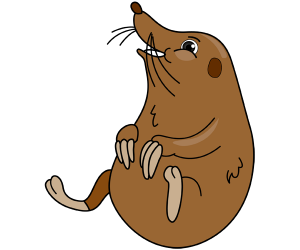 A mole, a small mammal with subterranean life Game