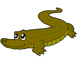 Alligator, reptile from fresh water Game