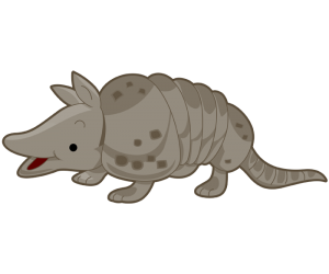 An armadillo, an American nocturnal mammal Game