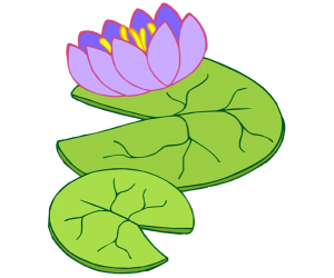 Aquatic plant with flower in the pond, waterlily Game