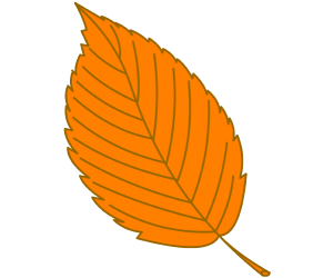 Dry leaf of a chestnut Game