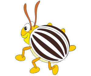 The potato beetle, a striped beetle Game