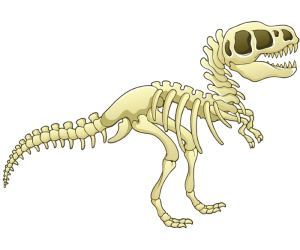 The skeleton of a dinosaur, prehistoric animal Game