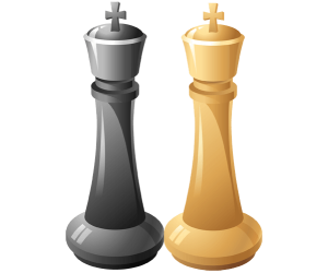 The two Kings, the objectives in chess Game