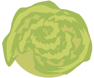 Wasabi, condiment for Japanese food Game